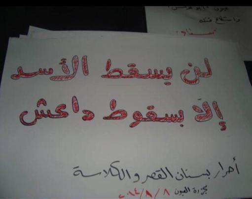 syria_interviews